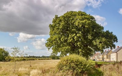 Kingsmere Gets the Green Light for Phase Two in Bicester